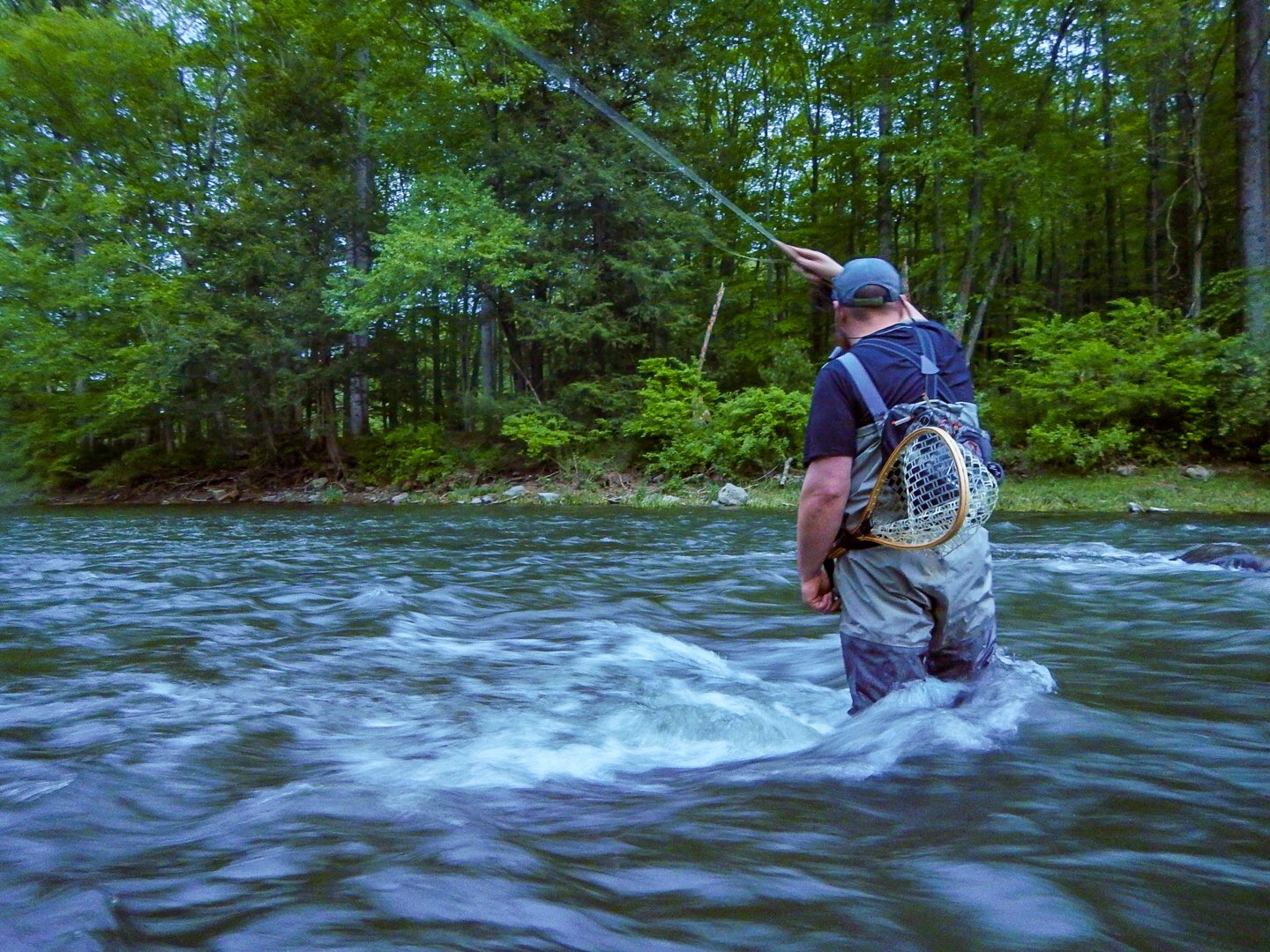 pennsylvania fly fishing and hatch report penns creek